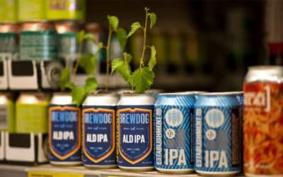 Brewdog and Aldi's tit-for-tat tactics provide payoffs for both brands…how refreshing!